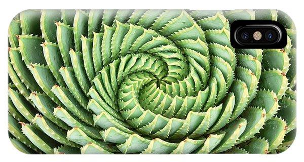 Botanical Garden iPhone Case - Pattern Of Spiral Aloe Aloe Polyphylla by Photosky