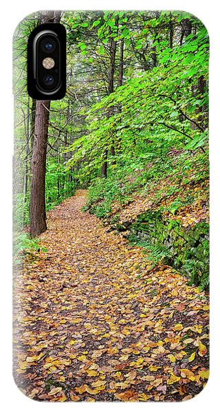 IPhone Case featuring the photograph Peaceful Autumn Trail At Watkins Glen State Park by Lynn Bauer
