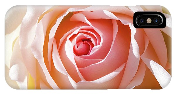 Peach iPhone Case - Soft As A Rose by Az Jackson