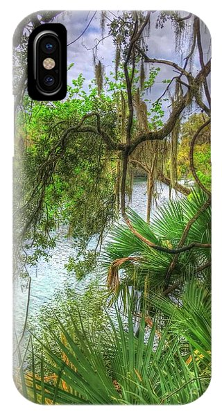 iPhone Case - Peeking Through The Trees by Debbi Granruth