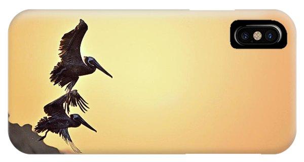Pelican Down IPhone Case