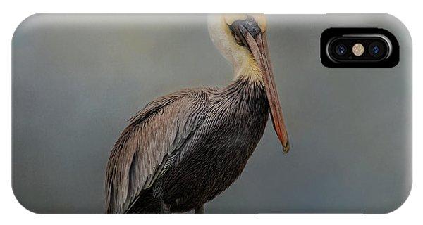 Pelican's Perch IPhone Case