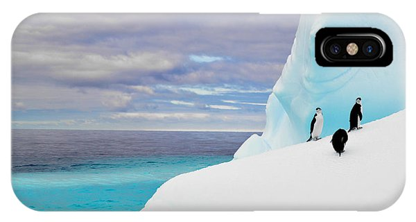 Glacier Bay iPhone Case - Penguins In Iceberg In Antarctica Pole by 2j Architecture
