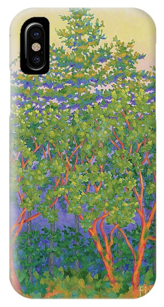 Port Townsend iPhone Case - Pentitude by Gail Powell