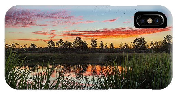 Phinizy Swamp Sunrise - Augusta Ga IPhone Case