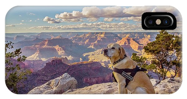 IPhone Case featuring the photograph Photo Dog Jackson At The Grand Canyon by Matthew Irvin