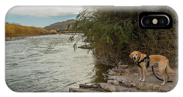 IPhone Case featuring the photograph Photo Dog Jackson At The Rio Grande by Matthew Irvin