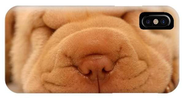 Adorable iPhone Case - Photo Of A Sharpei Puppy Asleep by First Class Photos Pty Ltd