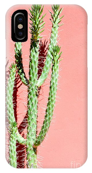 Botany iPhone Case - Photo Picture Of A Tropical Cactus by Underworld