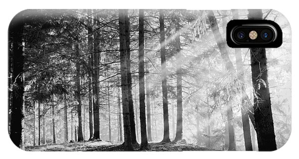 Harmony iPhone Case - Pine Tree With Lights And Fog,black And by Hofhauser