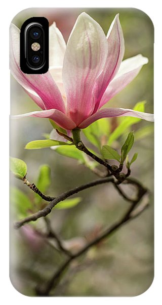 iPhone Case - Pink And White Blooming Magnolia by Jaroslaw Blaminsky