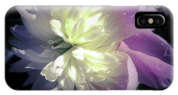 Pink And White Peony Petals And Drops  IPhone Case
