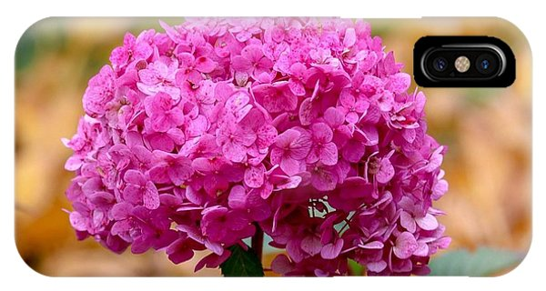 Pink Bouquet  IPhone Case