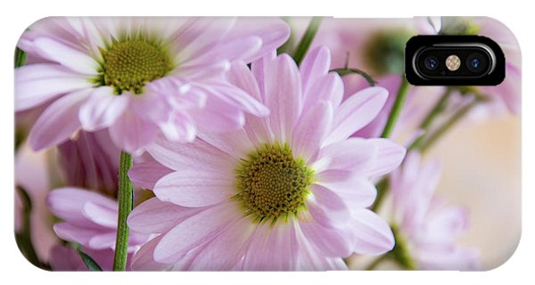 Pink Daisies-1 IPhone Case