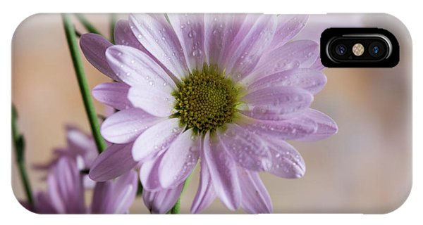 Pink Daisies-5 IPhone Case