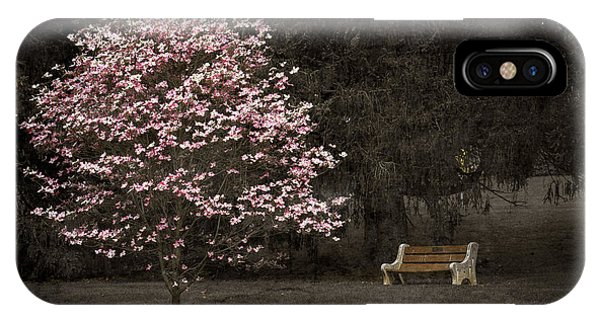 Pink Dogwood Tree And A Bench IPhone Case
