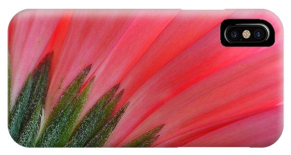 Blossom iPhone Case - Pink Gerbera Flower Macro by Tea Maeklong