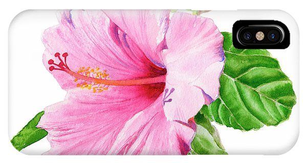Hibiscus Flower iPhone Case - Pink Hibiscus With White Background by Sharon Freeman