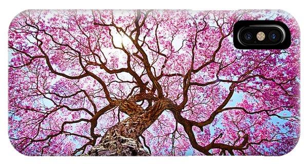 Nerves iPhone Case - Pink Lapacho Tree At Sun´s Back Light by Roberto Tetsuo Okamura