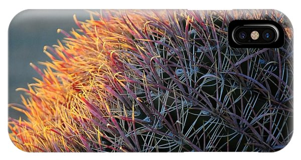 Pink Prickly Cactus IPhone Case