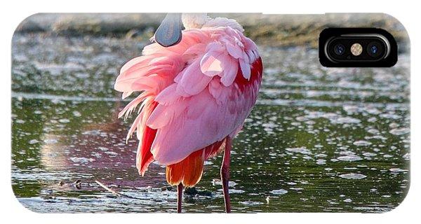Pink Tutu IPhone Case