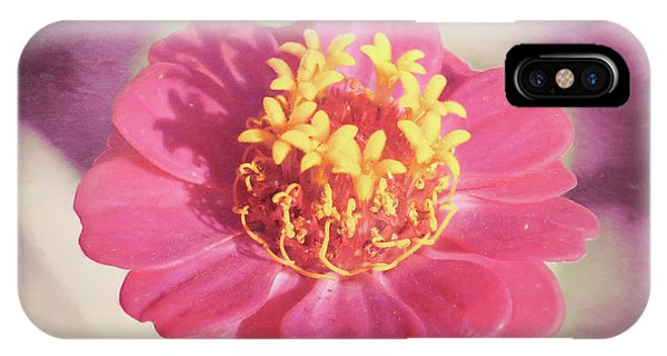 Pink Zinnia Isolated IPhone Case