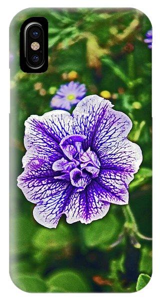 Pitlochry.  Purple Petunia. IPhone Case