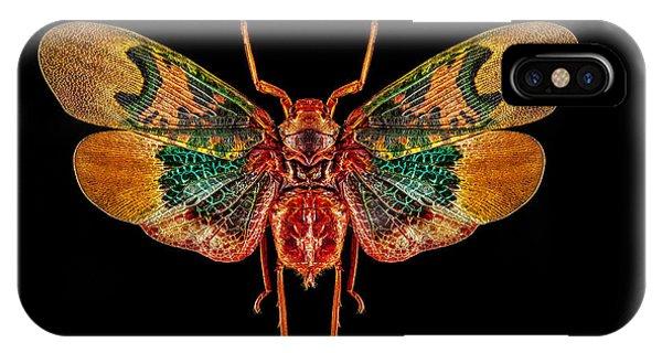 Planthopper Lanternfly IPhone Case
