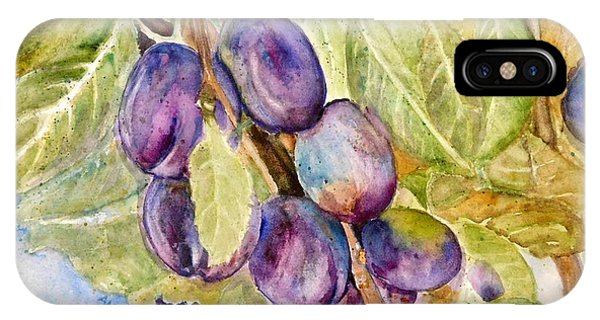 Plums On The Vine IPhone Case