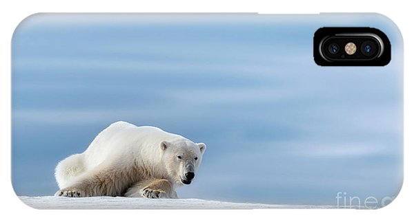 iPhone Case - Polar Bear Crouching On The Frozen Snow Of Svalbard by Jane Rix