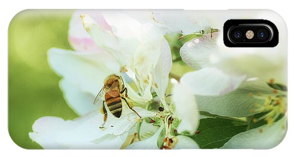 Honeybee iPhone X Case - Pollen Gathering by Susan Capuano