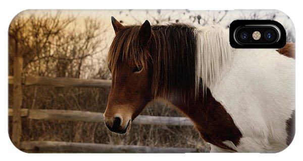 Pony Warm Up IPhone Case