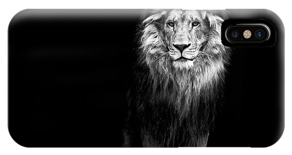 Portrait Of A Beautiful Lion, In The Phone Case by Baranov E