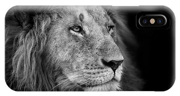East Africa iPhone Case - Portrait Of A Big Lion From Rekero by Maggy Meyer