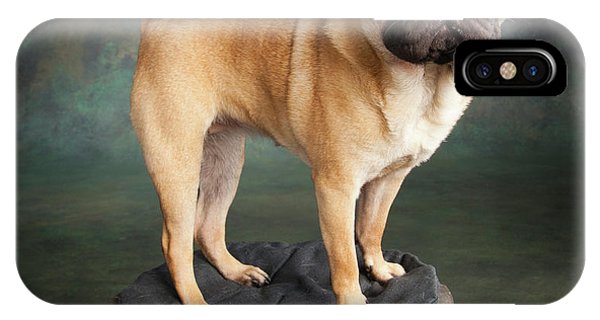 Pug iPhone X Case - Portrait Of A Pug Mixed Dog by Panoramic Images