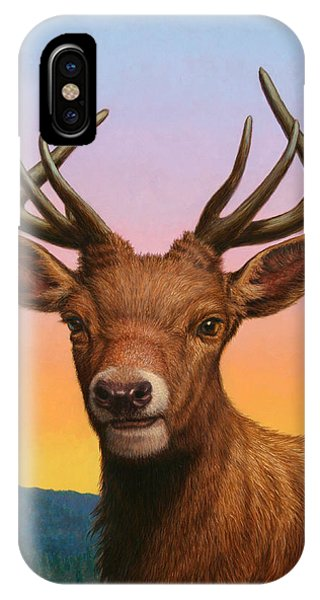 Stag iPhone Case - Portrait Of A Red Deer by James W Johnson