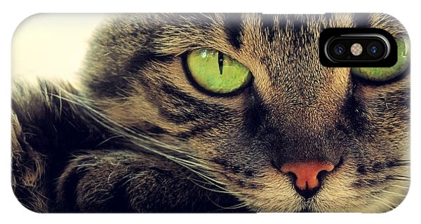 Tabby iPhone Case - Portrait Of Green-eyed Cat by Artdi101