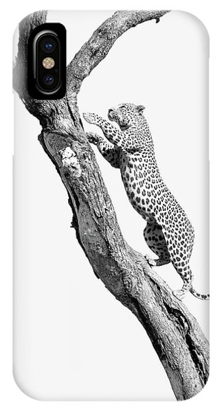 Power, Beauty And Grace IPhone Case