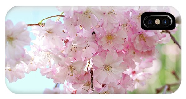 Pretty Pink Blossoms IPhone Case
