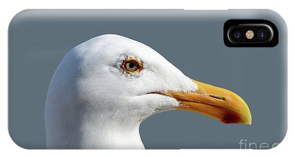 Pretty Western Gull In Profile IPhone Case