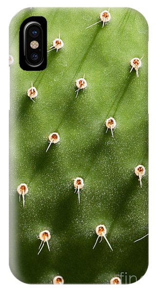Prickly Pear Cactus Close Up Phone Case by Sumikophoto
