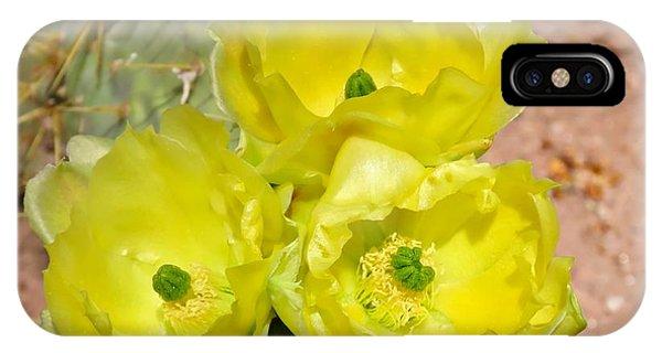 Prickly Pear Cactus Trio Bloom IPhone Case
