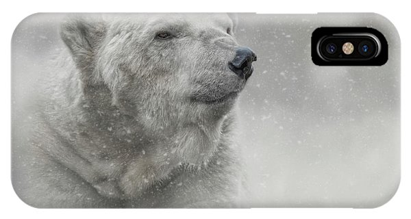 Prince Of The North Pole IPhone Case