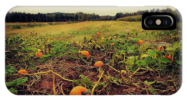 IPhone Case featuring the photograph Pumpkin Picking by Candice Trimble