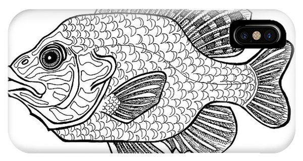 Pumpkinseed Fish IPhone Case