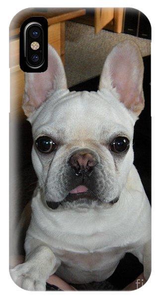 French Bull Dog iPhone Case - Puppy Frenchie by Barbra Telfer