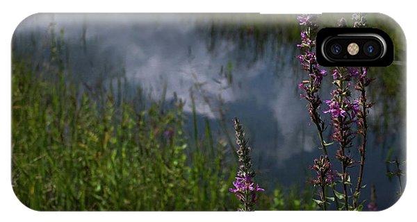 Wild Violet iPhone Case - Purple Daydream by Jerry LoFaro