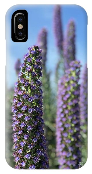 Purple Hyssop  IPhone Case