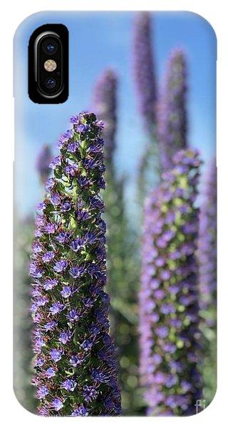 Purple Hyssop  IPhone Case