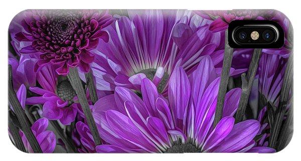 Purple Power Chrysanthem Selective Colorum  IPhone Case